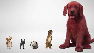 Clifford The Big Ręd Dog - First Look