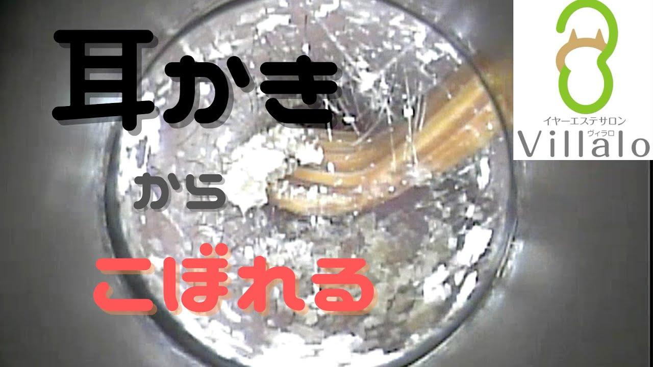 耳掃除動画vol.115「耳かきからこぼれる」