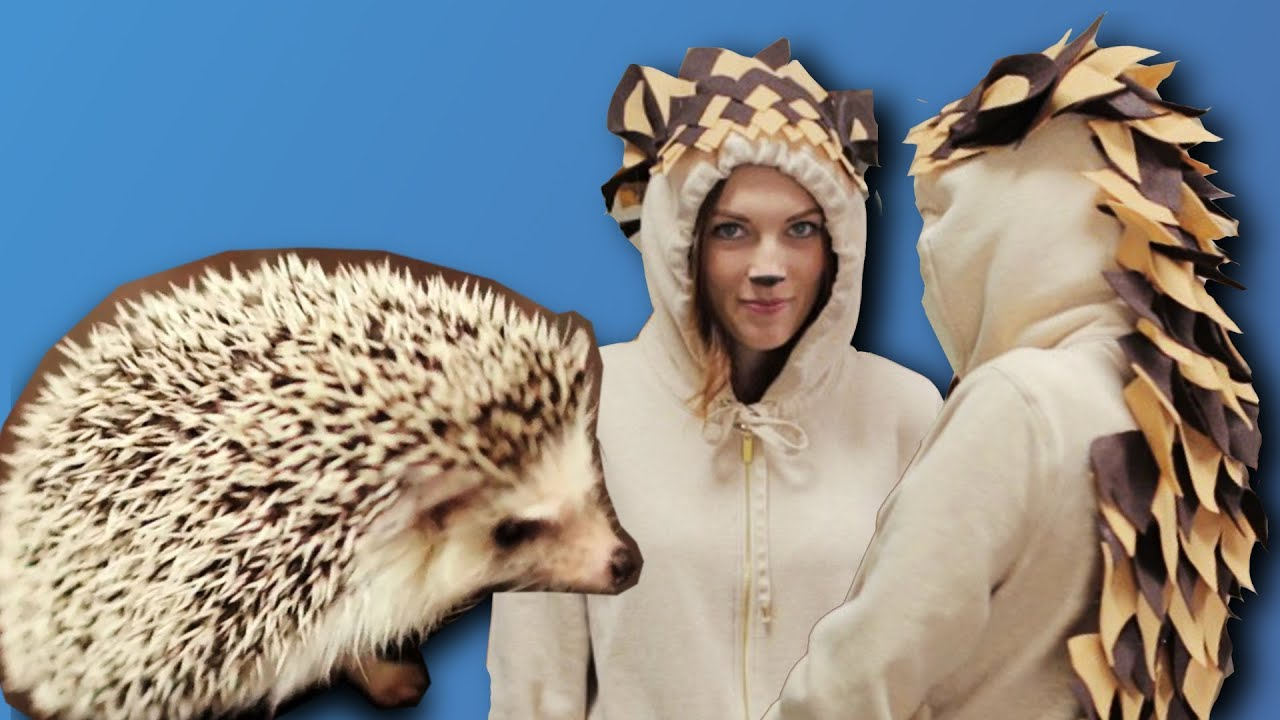 sc 1 st  YouTube & DIY HEDGEHOG COSTUME - LAST MINUTE - YouTube