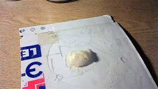 видео Как избавиться от мышей в квартире