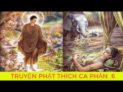Bạn Có Duyên Với Đức Phật Khi Nghe Kể Chuyện Đêm Khuya Phật Thích Ca Mâu Ni Truyện Phật giáo  p6