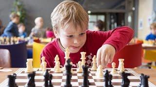 Шахові уроки для дітей українською. Урок 1