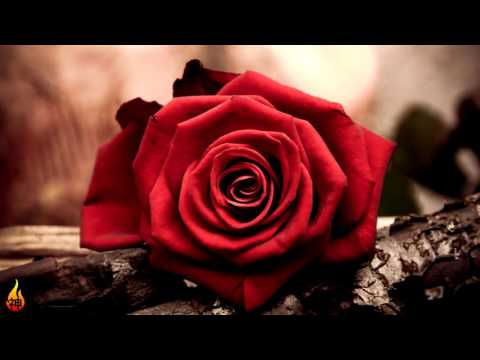 1 Hour Sad Piano Music | Emotional Instrumental Piano Music ♫452