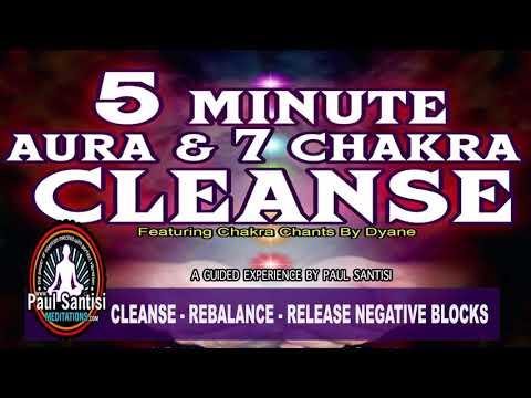 Aura & Chakra Rebalance Cleanse 5 Minute Guided Meditation Paul Santisi