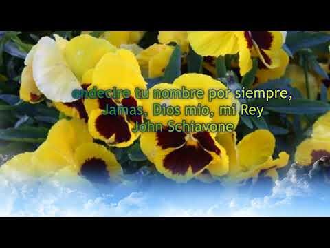 Salmo 144:  Bendecire tu nombre por siempre, jamas, Dios mio, mi Rey - John Schiavone