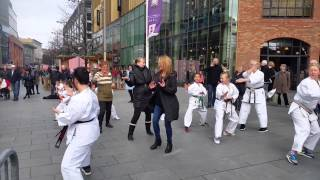 Karate - Red Triangle - This Girl Can Liverpool - Public Participation