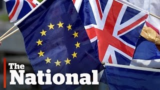 Brussels reacts to Brexit referendum