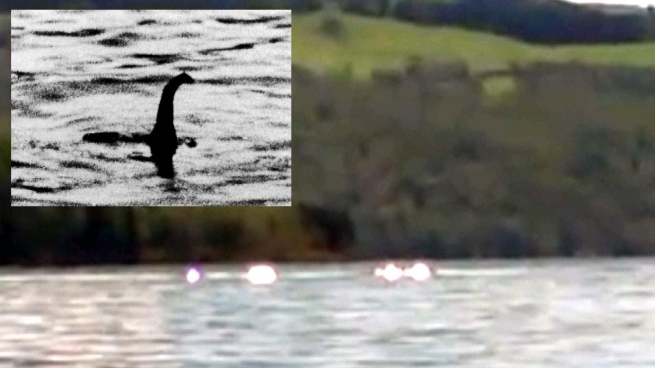 Did This 8 Year Old Girl And Her Grandmother Spot The Loch Ness Monster