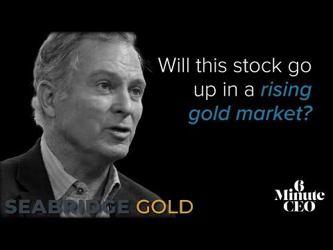 6 Minute CEO - Seabridge Gold - Copper 10 Billion Pounds