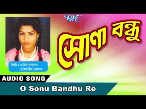 O Sonu Bandhu Re || Hamida Sarkar || New Assamese Songs 2016