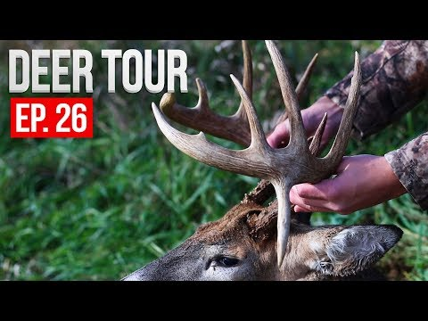 Hunting REMOTE Public Areas, Big Wisconsin Buck! - DEER TOUR E26