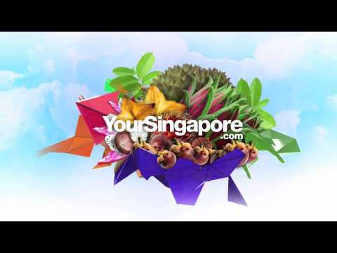 The most Amazing Logo Singapore Country Brand