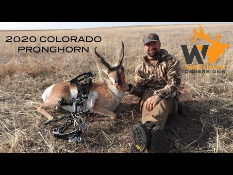 Pope & Young Pronghorn Archery Hunt Colorado 2020 - HUGE Buck!
