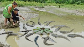 Survival Skill:  Bamboo fish trap uses 8 bamboo tubes to trap fish well, catching a lot of catfish
