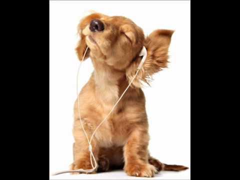 Download David Keno - Stars Above (Original Mix)