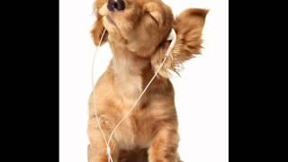 Download David Keno - Stars Above (Original Mix) MP3 song and Music Video