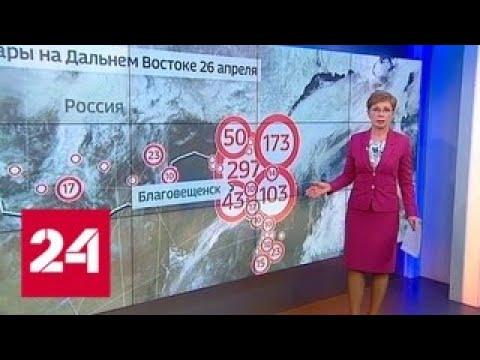 """""""Погода 24"""": арктическое вторжение в Амурской области вряд ли поможет в тушении пожаров - Россия 24"""