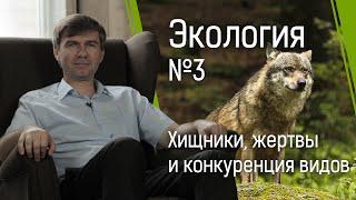Экология №3: хищники и жертвы и конкуренция видов