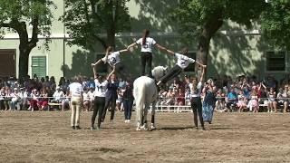 10 - Voltižní ukázka - Den starokladrubského koně 2018 v sérii videí