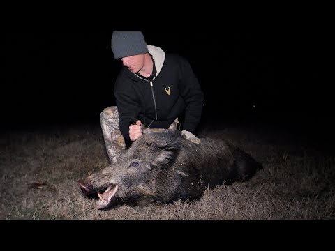 Hunting For Big Texas Hog | Glad I Had My PISTOL!