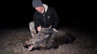 Hunting for Big Texas Hog | Glad I Had My PISTOL!