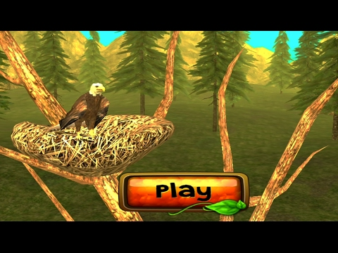 Wild Eagle Sim 3D Android Gameplay HD #1