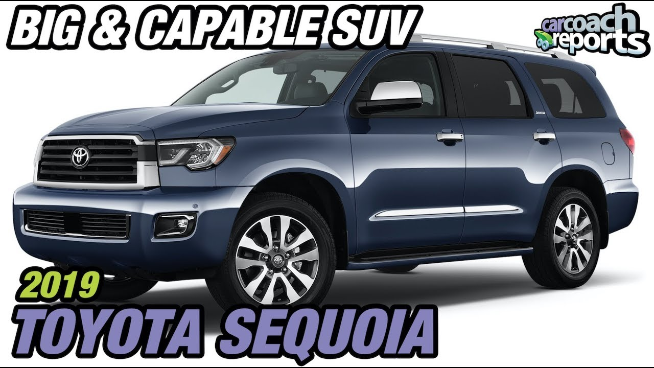 Toyota Large Suv >> 2019 Toyota Sequoia Big And Capable Suv