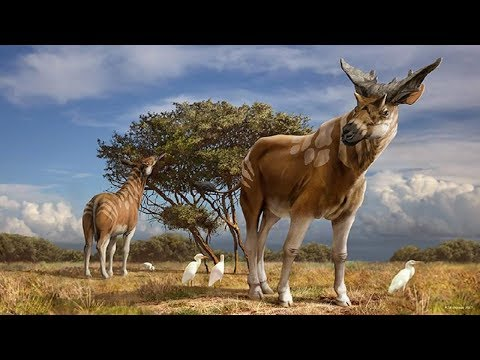 10 Most Amazing Extinct Animals Of Indian Subcontinent