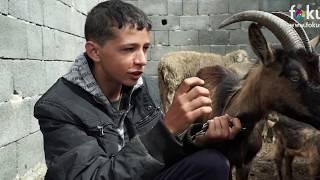 Kako danas živi dječak Jasmin koji je umjesto bicikla želio kozu