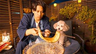 🐶夏バテしたのであの高級食材を愛犬と食べて回復を目指す/今後の方針について