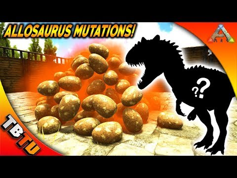 FULLY MUTATED ALLOSAURUS! ALLOSAURUS BREEDING AND MUTATIONS! Ark: Survival Evolved Zoo