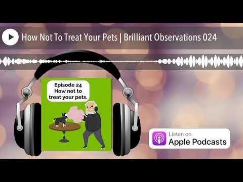 How Not To Treat Your Pets | Brilliant Observations 024