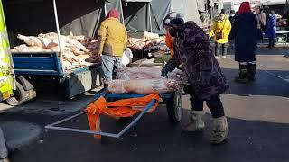 몽골 울란바토르 육류시장