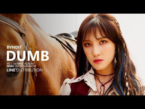 BVNDIT 밴디트 - DUMB | Line Distribution