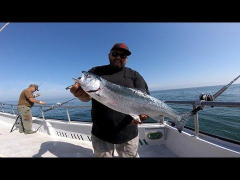 KING SALMON (CHINOOK SALMON)FISHING MONTEREY BAY THRESHER SHARK BONUS CATCH FATHERS DAY WEEKEND 2019
