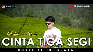 Download Lagu CINTA TIGA SEGI - SALEEM IKLIM (LIRIK) COVER BY TRI SUAKA mp3