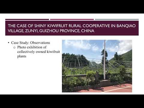 Social Entrepreneurship and Sustainable Development in Rural China, by Yuqing Li
