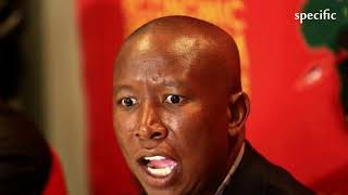 South Africa news today   'Bring it on, papa, we are not scared of these boers' - Malema