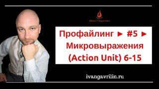 Профайлинг ► #5 ► Распознавание эмоций по каменнному лицу. Микровыражения Action Unit 6-15