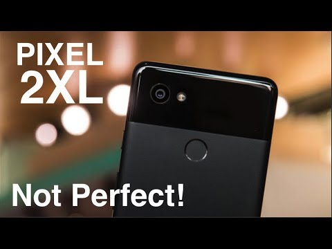 5 BIGGEST Problems With The Pixel 2 XL!