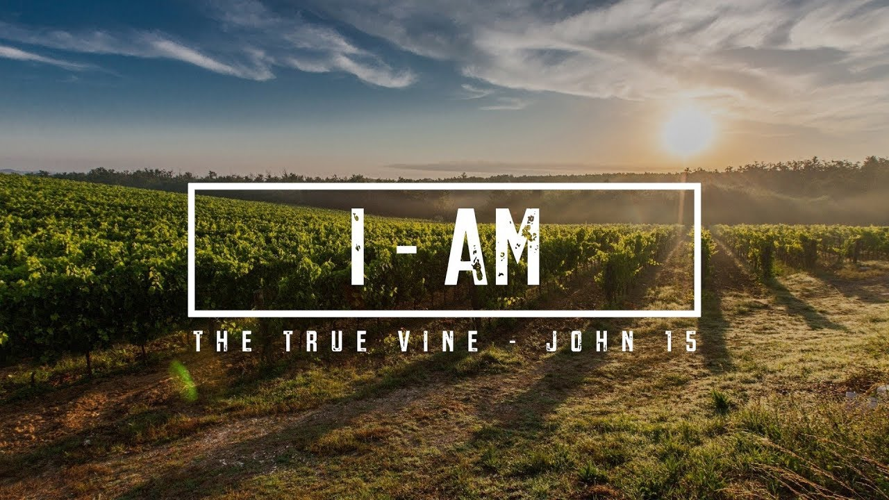I - AM, The True Vine - John 15