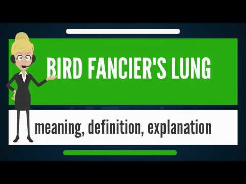 What Is BIRD FANCIER'S LUNG? What Does BIRD FANCIER'S LUNG Mean? BIRD FANCIER'S LUNG Meaning