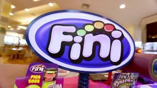 Conheça a Franquia FINI