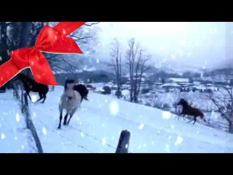 Merry Christmas - Hors... Mariah Carey Merry Christmas Youtube