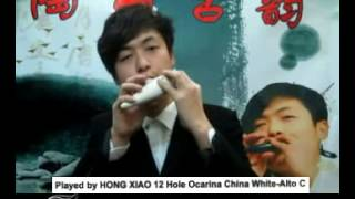 Hong Xiao Sweet Potato 12 Hole Ocarina Crack China White Ceramic Alto C