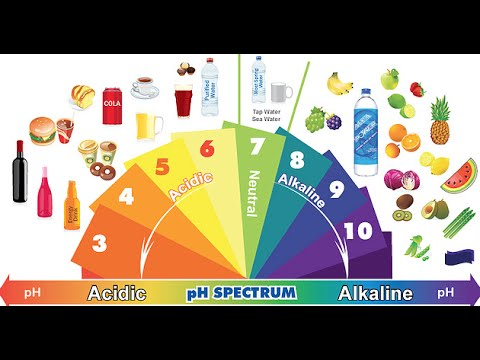 Acidic Foods vs. Alkaline Foods