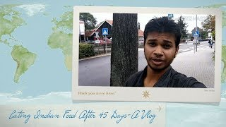 Episode 6-Eating Indian Food after 45 Days in Germany-A Foodie Vlog