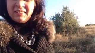 День на природе с собаками. Степи на Дону