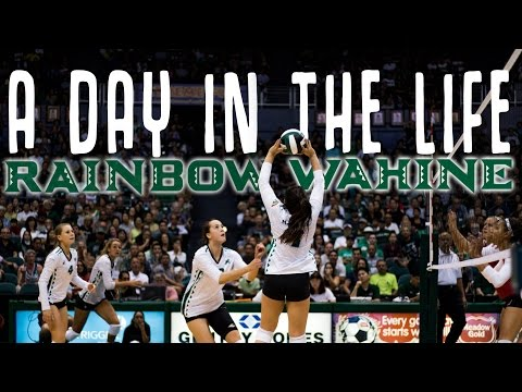 A Day in the Life: Rainbow Wahine Volleyball
