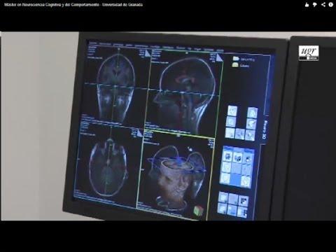 Máster en Neurociencia Cognitiva y del Comportamiento - Universidad de Granada
